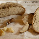 Pane semplice con pastra madre